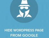 How to deindex your wordpress site