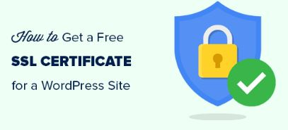 Ssl Certificates For Stores / Purchase Of An Ssl Certificate For A Website Doesn't Have To Be Hard